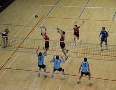 Волейбол Динамо